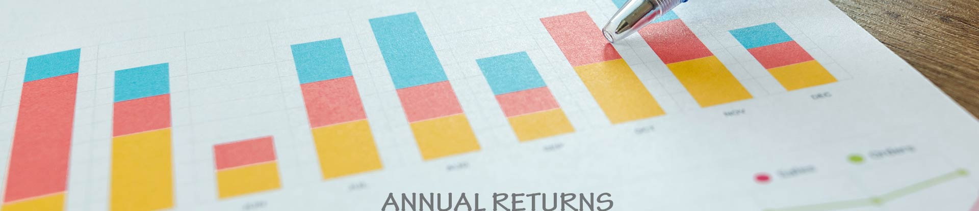 Annual Returns | Captain Polyplast Ltd.